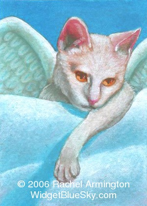 Unique paintings by animal artist Rachel - Angel Cat