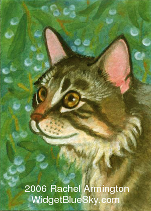 Original paintings by cat artist Rachel - Christmas with my Favorite Maine Coon Cat